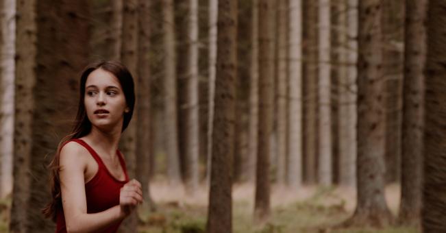 Im Wald – Kurzfilmprogramm