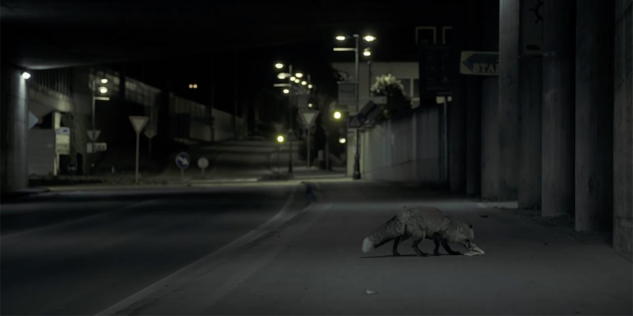 Voodoo Jürgens: Tulln