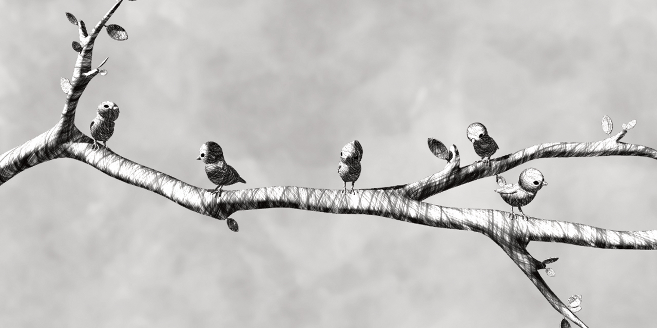 Bird on the Wire